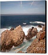 Point Lobos Number One Canvas Print by Catherine Lau