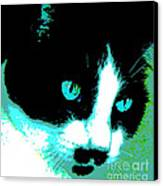 Poster Kitty Canvas Print by Elinor Mavor