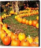 Pumpkin Patch Path Canvas Print by Carol Groenen