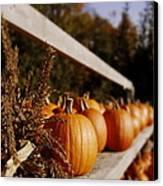 Pumpkins Aglow Canvas Print by Christine Tuck
