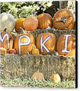 Pumpkins P U M P K I N S Canvas Print by James BO  Insogna
