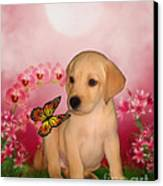 Puppy Innocence Canvas Print by Smilin Eyes  Treasures