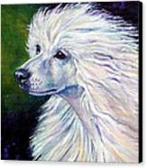 Pure Poetry - Chinese Crested Canvas Print by Lyn Cook