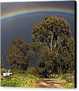 Rainbow Canvas Print by Photostock-israel