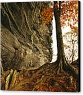 Raven Rock And Autumn Colored Beech Canvas Print by Raymond Gehman