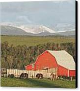 Red Barn With Horses Grazing Canvas Print by Michael Interisano