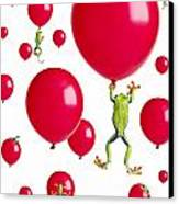 Red-eyed Treefrogs Floating On Red Canvas Print by Corey Hochachka