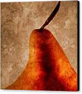 Red Pear I Canvas Print by Carol Leigh