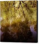 Reflection Canvas Print by Joana Kruse