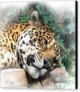 Relaxing 2 Canvas Print by Ernie Echols