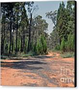 Road To Nowhere Canvas Print by Joanne Kocwin