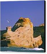 Rocky Coast Of Cape Kiwanda State Canvas Print by Craig Tuttle