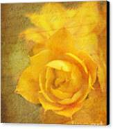 Roses For Remembrance Canvas Print by Judi Bagwell