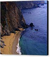 Rugged Shoreline Canvas Print by Ron Regalado