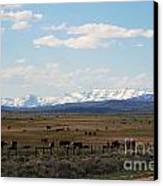 Rural Wyoming - On The Way To Jackson Hole Canvas Print by Susanne Van Hulst