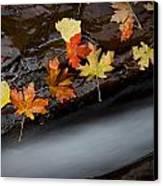 Rushing Autumn Canvas Print by Jim Speth