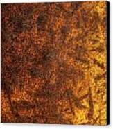 Rusty Background Canvas Print by Carlos Caetano