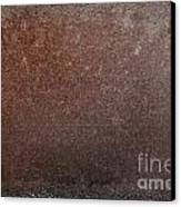 Rusty Iron Canvas Print by Carlos Caetano