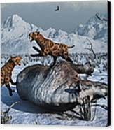 Sabre-toothed Tigers Battle Canvas Print by Mark Stevenson