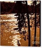 Salmon Is Running 2 Canvas Print by Tanya  Searcy