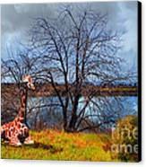 Sanctuary . 7d12636 Canvas Print by Wingsdomain Art and Photography