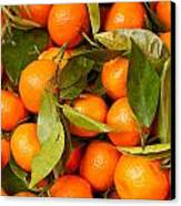 Satsumas Canvas Print by Tom Gowanlock