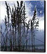 Sea Oats On Tybee Canvas Print by Leslie Revels Andrews