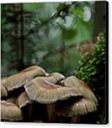 Sea Of Heads Canvas Print by Odd Jeppesen