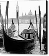 Seagull From Venice - Venezia Canvas Print by Bronco - J. Heiligensetzer
