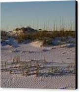 Seaside Dunes 4 Canvas Print by Charles Warren