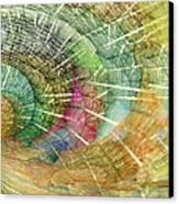 Season Of The Shell Canvas Print by Betsy Knapp