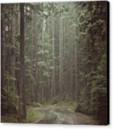 Secret Pathway Canvas Print by Christopher Kimmel