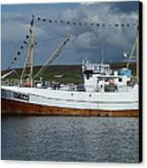 Sf-5-nv Visiting Shetland Canvas Print by George Leask