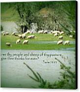 Sheep Grazing Scripture Canvas Print by Cindy Wright