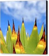 Side View Of Cactus On Blue Sky Canvas Print by Greg Adams Photography