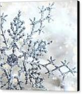 Silver Blue Snowflake  Canvas Print by Sandra Cunningham