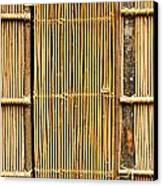 Simple Bamboo Door Canvas Print by Yali Shi