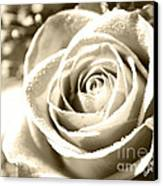Simple Canvas Print by Cheryl Young