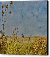 Singing In The Grass Canvas Print by Jerry Cordeiro