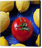Single Tomato With Lemons Canvas Print by Garry Gay