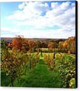 Six Miles Creek Vineyard Canvas Print by Paul Ge