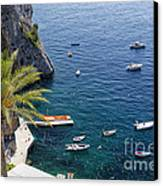 Small Boats And A Palm Tree Canvas Print by George Oze