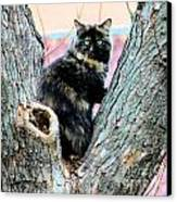 Snickers Caught In The Act Canvas Print by Cheryl Poland