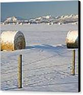 Snow Covered Hay Bales In A Snow Canvas Print by Michael Interisano