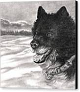 Snow Dog Canvas Print by Kathleen Kelly Thompson