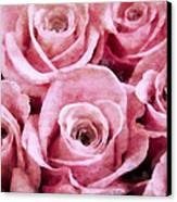 Soft Pink Roses Canvas Print by Angelina Vick