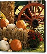 Southern Harvestime Display Canvas Print by Kathy Clark