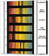 Spectra Chart, Blood Samples, 1894 Canvas Print by Science Source