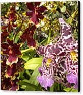 Spotted Flowers Canvas Print by Silvie Kendall