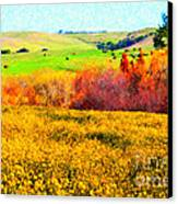 Springtime In The Golden Hills . 7d12402 Canvas Print by Wingsdomain Art and Photography
